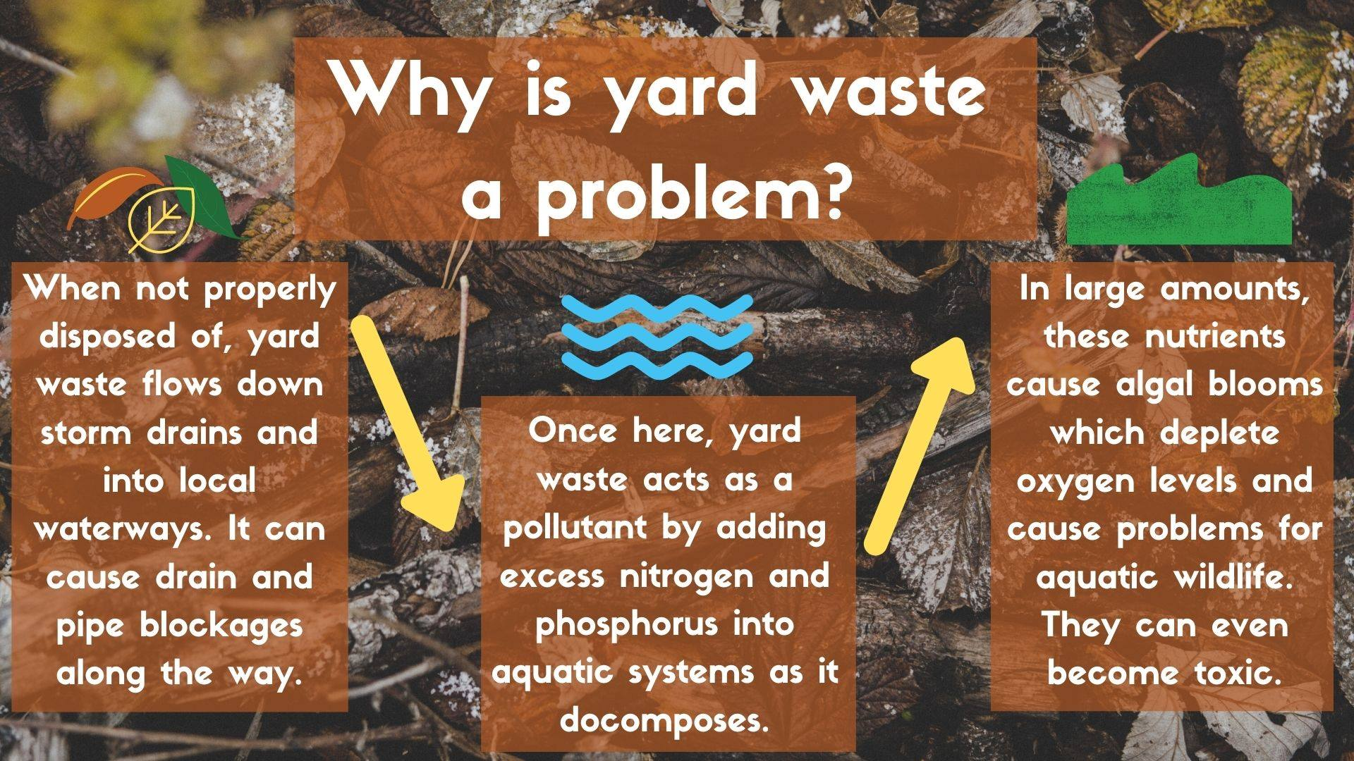yard waste contributes to water pollution