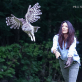 woman letting go of an owl and it flying away